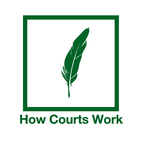 the courtroom workgroup essay Courtroom work group there are many parts of the courtroom and the process of convicting a criminal the courtroom work group has a major role in convicting.